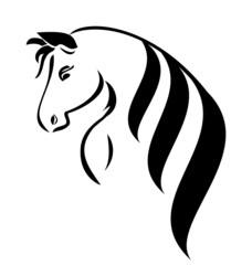 Head horse with beauty hair vector