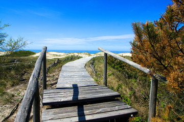 Wooden way to the beach