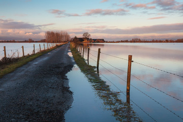 Road to a Dutch farm flooded by water from the river IJssel