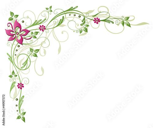 ranke flora blume bl te border frame gr n rosa stockfotos und lizenzfreie vektoren auf. Black Bedroom Furniture Sets. Home Design Ideas