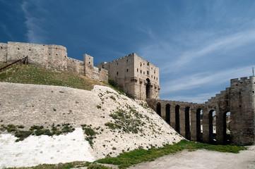 The mighty citadel of Aleppo, Syria