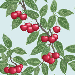 Vector seamless background with cherries