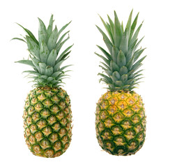 two fresh and juicy pineapples