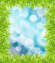 green grass frame isolated on bokeh background
