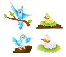 Wall Murals Birds, bees Cartoon Birds Vectors