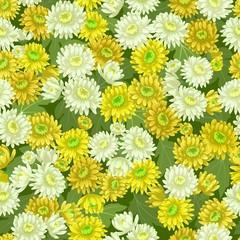 Seamless yellow white chrysanthemum backgrounds