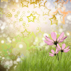 Green grass with beautiful flowers
