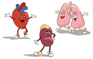 character set internal organs 1