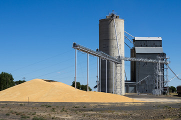 Grain elevator with pile of grain
