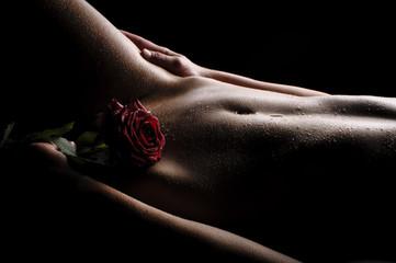Fototapeta Nackter Bauch mit Rose obraz