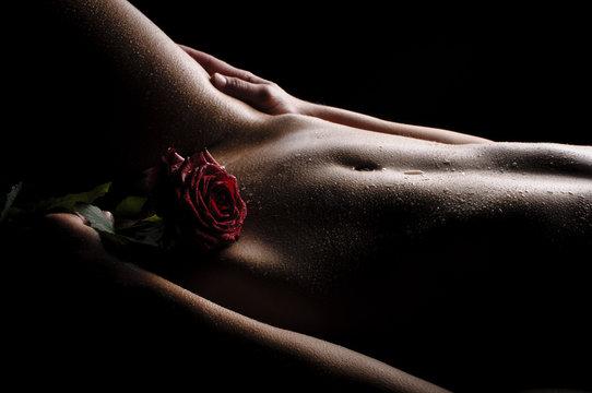 Nackter Bauch mit Rose