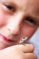 Child holds a lizard in his hand.