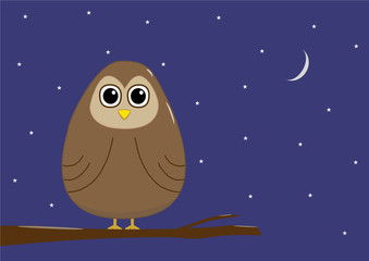 Cartoon owl at night