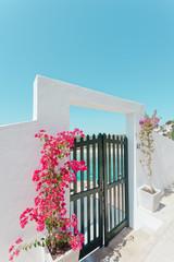 Menorca in der Blüte - Balearen