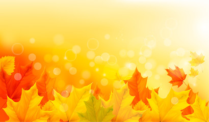 Autumn background with yellow leaves and hand.