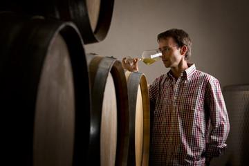 Winemaker in cellar smelling white wine in glass.