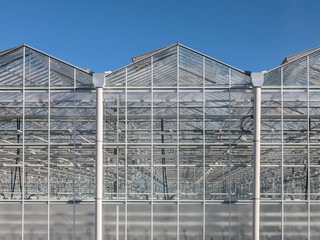 Front view of a greenhouse in The Netherlands