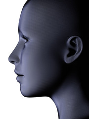 Blue fibre face