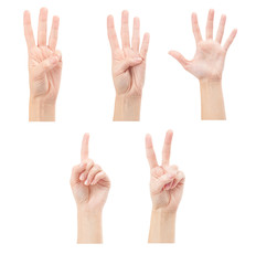 Counting woman hands (1 to 5) isolated on white background