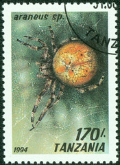 stamp printed in Tanzania shows image of a araneus sp