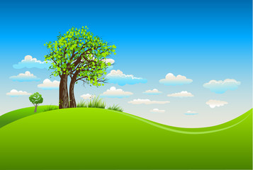 Summer background with tree