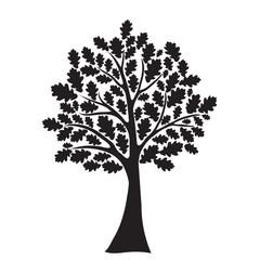 black oak tree, stylized, vector for design