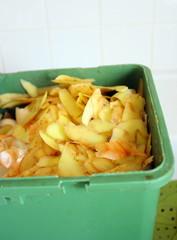 bac de compost,