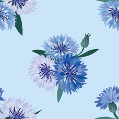 cornflower seamless pattern. floral background cornflowers