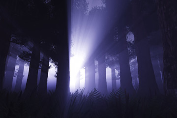 Supernatural scene in dark deep forest 3D render