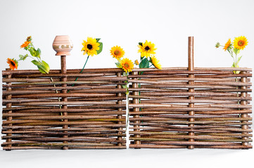 Traditional ukrainian wattle with sunflowers and pot