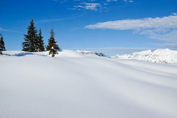 Fototapete - Verschneite Winterlandschaft