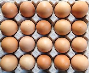 Tray Eggs