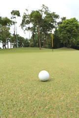 golf ball at the green ready for putting