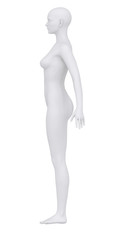 Female body in anatomical position lateral view clipping path