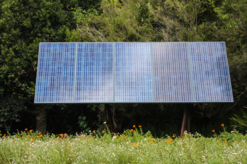 Solar panel in front of trees