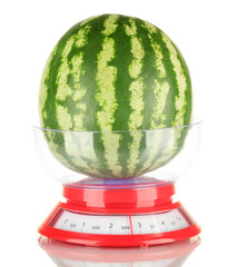 Ripe watermelon in kitchen scales isolated on white