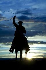 Fototapete - Cowboy on horse facing roping