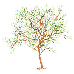 Tree. The trunk and leaves in separate layers. Vector illustrati