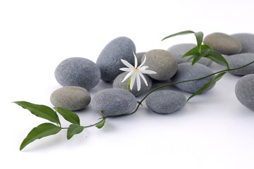 White flower and leafs on pebble- Spa still life