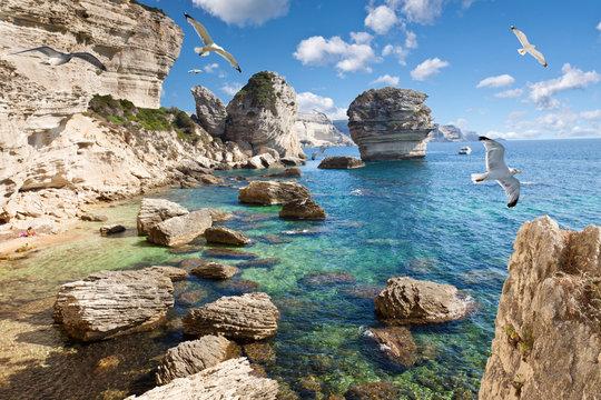 falaises de Bonifacio, Corse