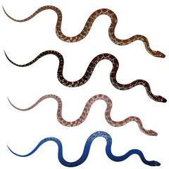 Set pretty realistic snakes