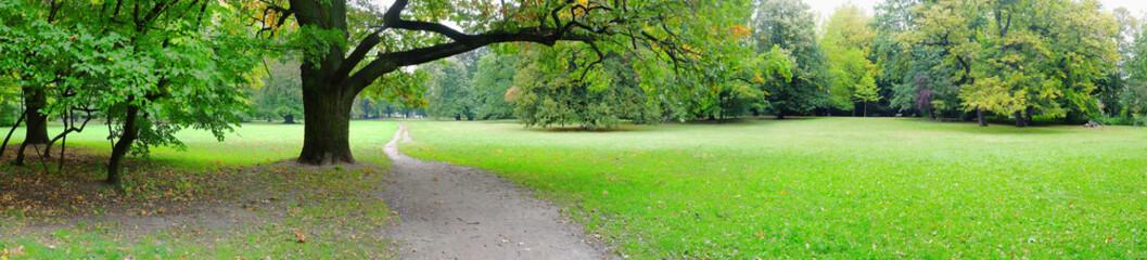 Park in autumn time - fototapety na wymiar