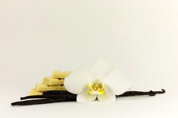 Fototapeta Biały storczyk