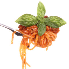 Spaghetti bolognese with basil leaves on a fork