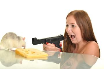 rat eaitng cheese