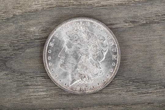High Qaulity Silver Dollar on aging wood