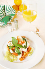 Classical Italian salad with vegetables on the plate