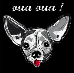 chien animal race face portrait gueule amour texte