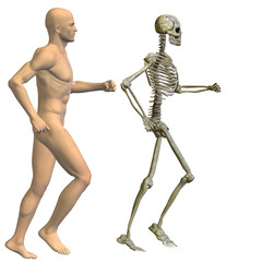 High resolution conceptual 3D human ideal for anatomy, medicine