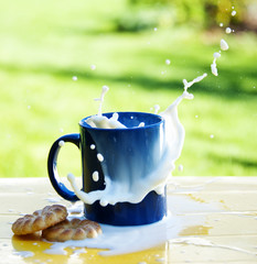 milk splash and biscuits